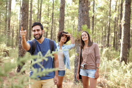 looking ahead: A young man pointing at something for his friends a pine forest in the late afternoon sunshine, looking ahead while wearing casual clothing