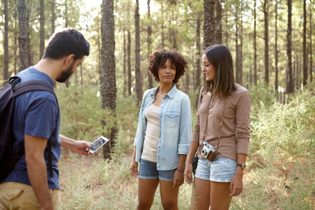 pine three: Three friends discussing something in a pine tree forest in the late afternoon sunshine while looking at the cell phone Stock Photo