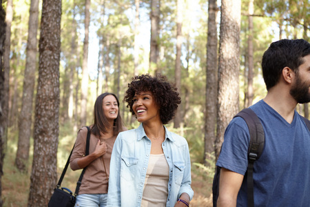 pine three: Three laughing, happy friends strolling through a pine tree forest in the late afternoon sunshine while wearing casual clothing Stock Photo