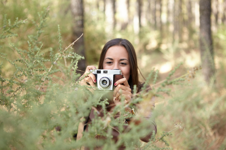 dappled: A young brunette taking a picture of a young sapling in a pine forest in the dappled late afternoon sunshine