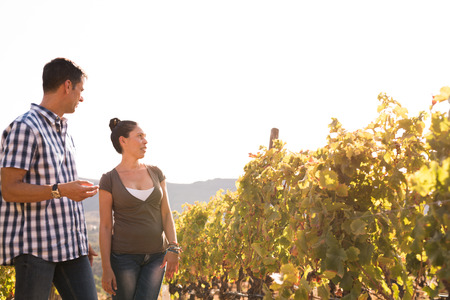 Handsome young couple spending time outside in the vineyard in their leisurewear on a sunny day Stock Photo