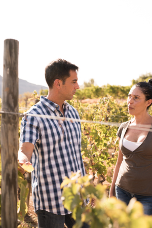 Attractive couple talking in the vineyard wearing casual clothing and looking at each other