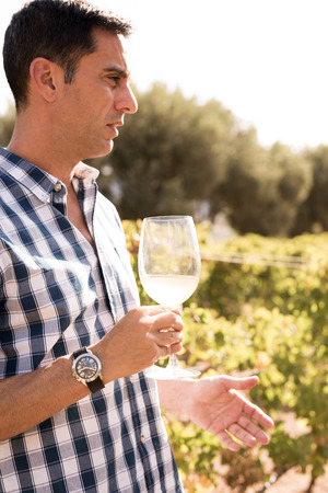 Handsome man having some white wine out in the vineyards on a sunny day wearing a checkered shirt Reklamní fotografie