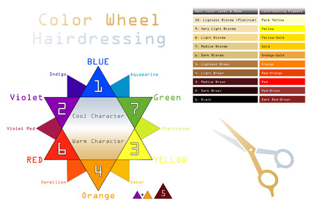 secondary colors: Color Wheel Hairdressing Illustration
