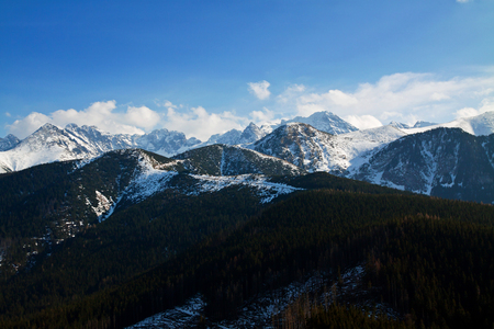 zakopane: Mountain snowy landscape with forest in Zakopane