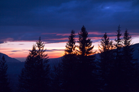 zakopane: Mountain landscape with sunset and pine trees in Zakopane