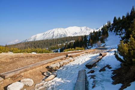 zakopane: Mountain snowy landscape with path in Zakopane