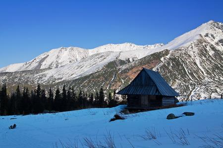 zakopane: Mountain snowy landscape with wooden house shelter in Zakopane