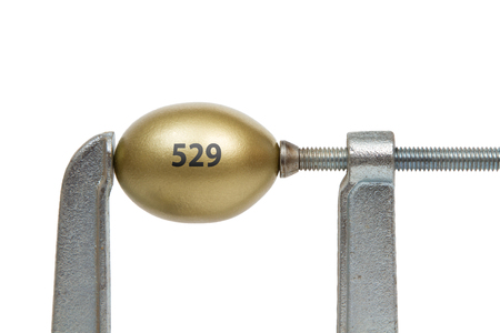 nest egg: A golden nest egg with 529 text  squeezed between a metal clamp.