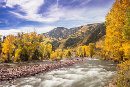 aspen leaf: Autumn in the mountains along the Roaring Fork River in Carbondale, Colorado