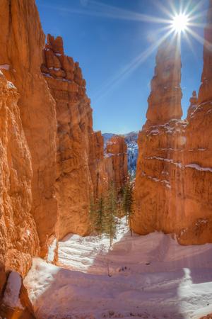 Winter along the Navajo Trail in Bryce Canyon National Park, Utah