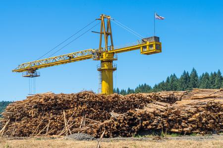 logging: Crane processing a large stockpile of cut logs at a logging plant
