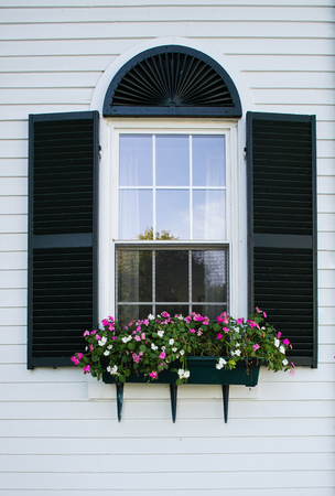 flower box: New England window with black shutters and flower box.