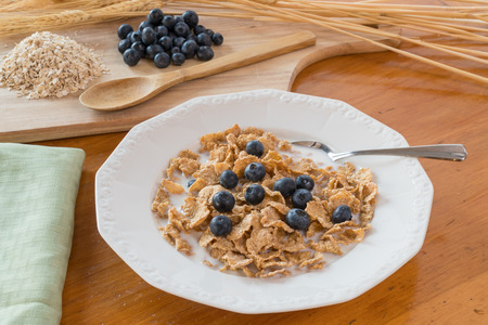 cereal bowl: Cereal with blueberries and milk in a white bowl