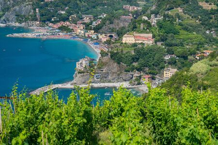 monterosso: Monterosso along the Cinque Terre, Italy with vineyards in the foreground Stock Photo