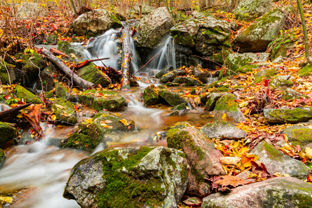 Colorful Leaves along a Mountain Stream Waterfall in Autumn