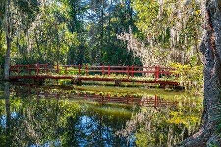 Bridge over Cypress Gardens in Charleston, South Carolina 스톡 콘텐츠