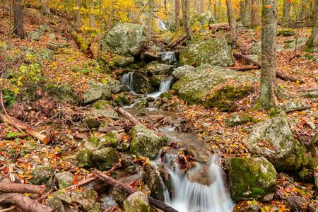 Mountain Stream Waterfall in Autumn in Shenandoah National Park