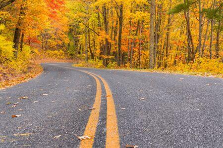 Fall foliage in Shenandoah National Park along the Blue Ridge Parkway