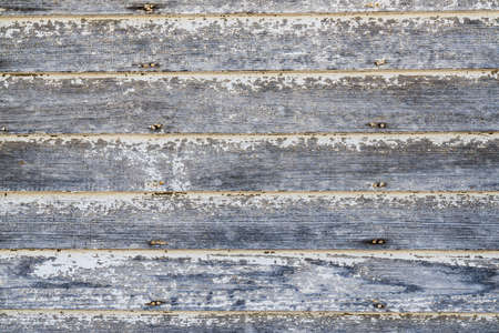Weathered white and gray wood plank background with peeling paint