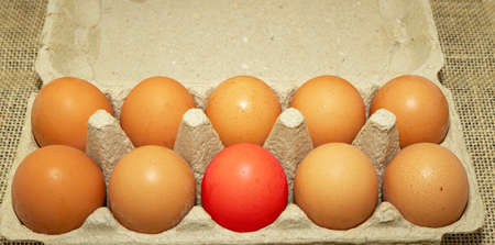 Chicken eggs in a cardboard container. One egg out of ten is colored red.