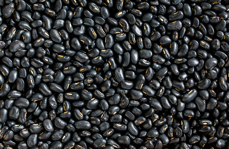 Black Bean Background 免版税图像