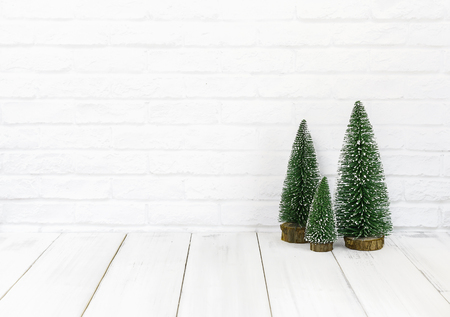 Pine tree on white wood table over white background with copy space