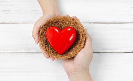 Woman Hand and Men Hand Hold Red Heart in bird nest on white wood background. Couple Protect Love or Health Concept with Copy Space.