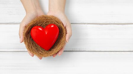 Woman Hands Hold Red Heart in bird nest on white wood background. Protect Love or Health Concept with Copy Space.