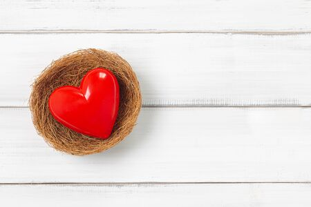 Red Heart Inside bird nest on white wood background. Protect  Love with Copy Space.