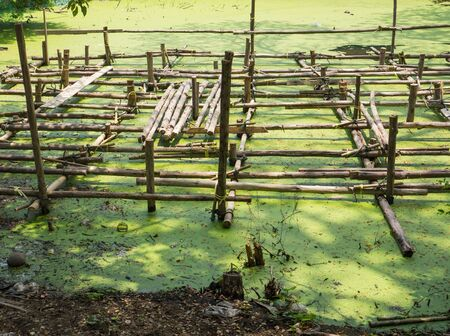 The wooden structure is builded in polluted water Stock Photo - 19079482