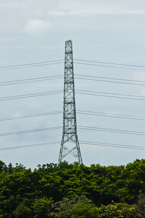 THAILAND SEPTEMBER 17  The electricity high-tension post and tree top on September 17, 2013 in Bangkok