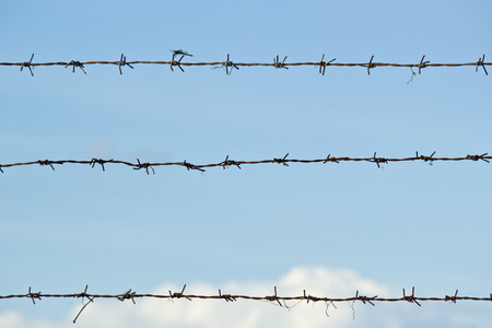 Old barbed wire and dragonfly on blue sky background at countryside