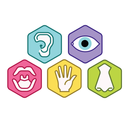 Icon set of five human senses vision eye, smell nose, hearing ear, touch hand, taste mouth. Simple line icon vector illustration. color abstract set
