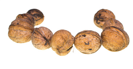 Ripe nuts on white background Imagens