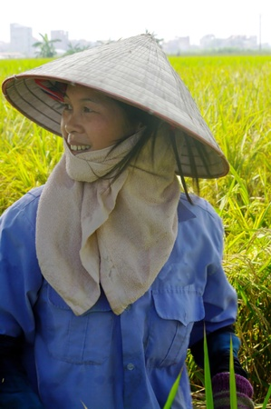 criterio: Questa donna lavora nel campo della risaia. Nonostante il caldo ha il volto coperto da un tovagliolo. Con il tradizionale cappello conico protegge il suo facefrom al sole. Il criterio di bellezza per le donne in Asia � quello di avere la pelle molto bianca Archivio Fotografico
