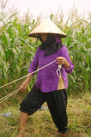 re: Kinh mère ethniques Stock Photo