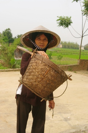 grandmother, women, agee, senior, viet, kinh, dress, typical, ethnic, diversity, shirt and dark trousers, conical hat, mode, folklore, picks, bucket, bamboo, barefoot, asia, vietnam. photo