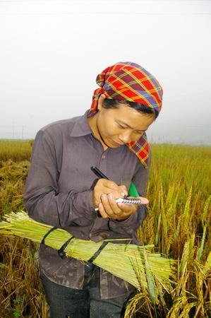 jeune: Jeune Paysanne du Vietnam, �crivant des Nations unies sur lONU MOT carnet Au milieu de la Rizi�re la DANS la brume du matin