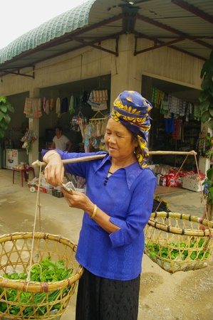 stockade: Thai elderly woman and her white stockade  She has her recipe because she sells her vegetables in the street