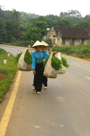 two women from ethnic Thai black market to make their harvest water spinach