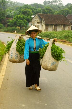 woman of the ethnic Thai black market will sell their harvest water spinach