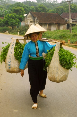 These two women from ethnic Thai black market to sell water spinach