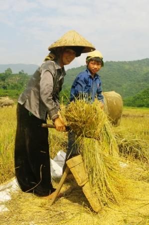 Harvest Family Stock Photo