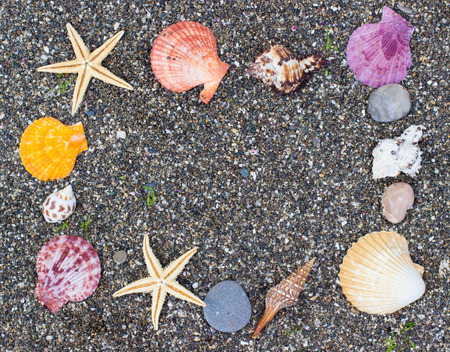 relaxion: Seashells on small coast pebbles, frame with copy space. Travel background. Stock Photo