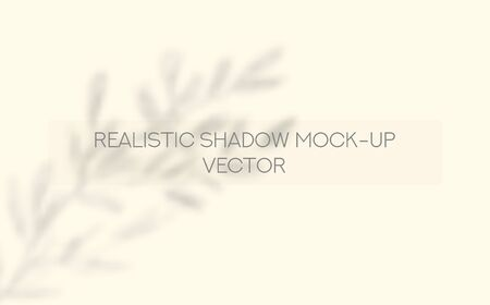 Window and Tree Leaves Shadows on Blank Wall Vector Realistic Overlay Mockup. Sunlight over the window photo overlay Effect Template for social media backgrounds, product presentations, photo shots.