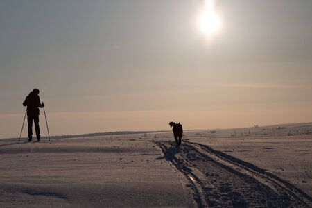 A man is skiing. A dog is running nearby. All this against the backdrop of the setting winter sun. Silhouette shot
