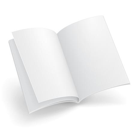 空に飛行の雑誌、書籍、小冊子、パンフレット、カバーします。白い背景で隔離の図。
