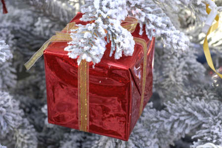 happier: a gift in a Christmas tree