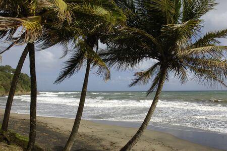 martinique: the coast of  Le Diamant in Martinique Stock Photo